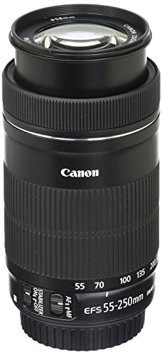 Canon EF-S 55-250mm F4-5.6 is STM Lens for Canon SLR Cameras (Certified Refurbished)