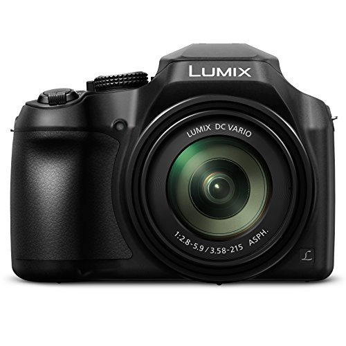 PANASONIC LUMIX FZ80 4K 60X Zoom Camera, 18.1 Megapixels, DC VARIO 20-1200mm Lens, F2.8-5.9, 4K 30p Video, Power O.I.S., WiFi - DC-FZ80K (USA BLACK)