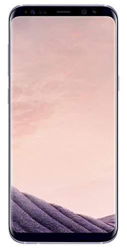Samsung Galaxy S8 - 64GB - Orchid Gray - Verizon + GSM Factory Unlocked 4G LTE (Certified Refurbished)